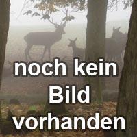 Haendler & Natermann / Deutsch FFW-Geschosse Blei